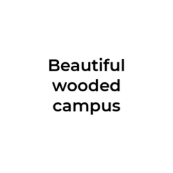 Beautiful wooded campus