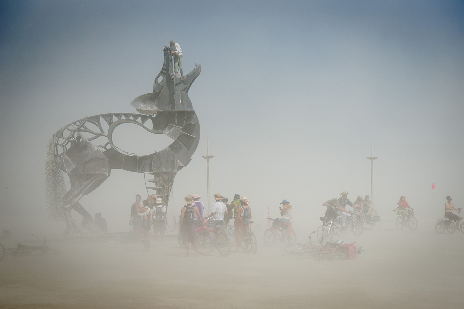 Coyote sculpture at Burning Man in 2013